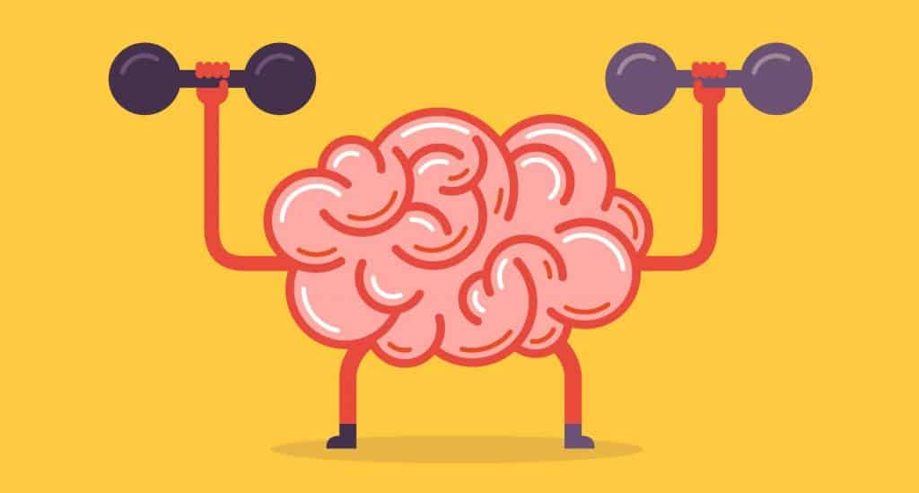 kwiko - spaced repetition and brain workout